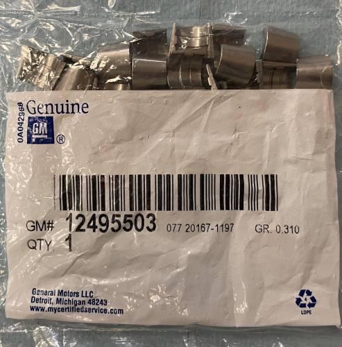 GM (General Motors) - 12495503 - Factory 602 Keeper Set